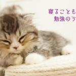 『睡眠不足じゃ勉強しても意味がない?』よく眠る10ヶ条で記憶力UP!!《短眠法の効果ってあるの?》