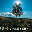 OH53_ipponnoki500